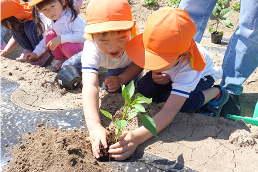 農作物の栽培をする子供たちの写真
